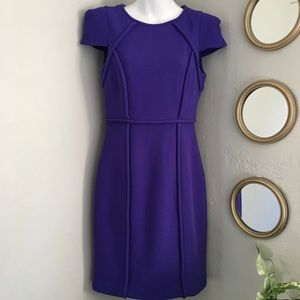 Tibi Pleated Seam Cap Sleeve Sheath Dress